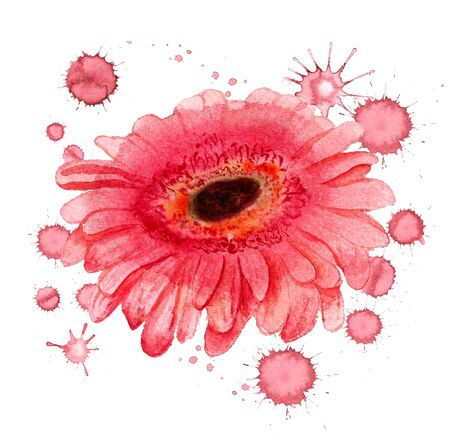 Watercolor image of flower of gerbera with paint blots on white background