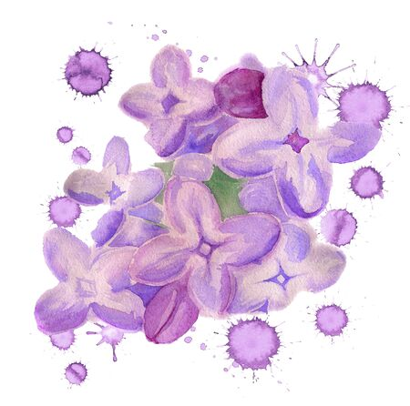 Watercolor image of flowers of lilac with paint blots on white background Stock Photo