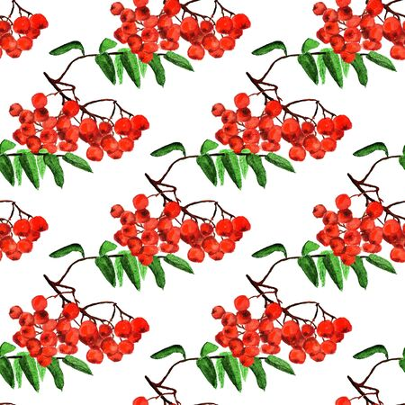 Seamless pattern with watercolor image of rowan. Good for textile fabric design, wrapping paper and website wallpapers. Stock fotó
