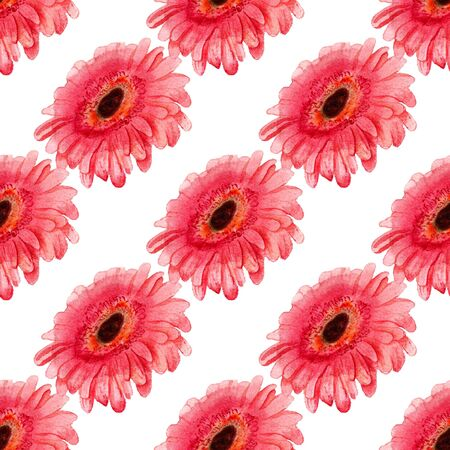 gerbera daisy: Seamless pattern with watercolor image of gerbera flower. Good for textile fabric design, wrapping paper and website wallpapers.