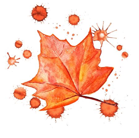 Watercolor image of autumn leaf of maple with paint blots on white background Stock Photo