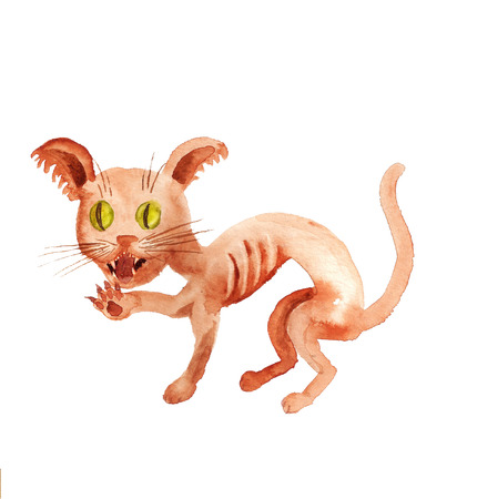 Watercolor image of agressive red cat on white background Reklamní fotografie