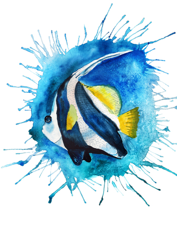Watercolor image of Pennant coralfish with blue blot background