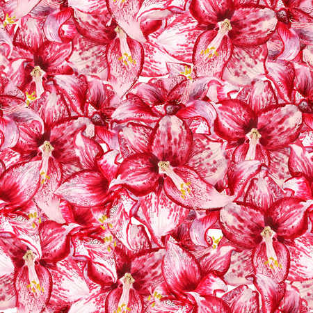 Seamless pattern with watercolor image of red flowers of amaryllis