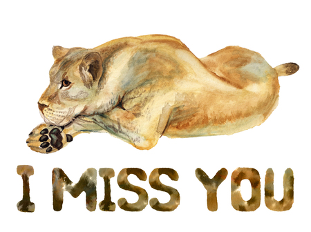 Watercolor image of lioness on white background with text I miss you Reklamní fotografie