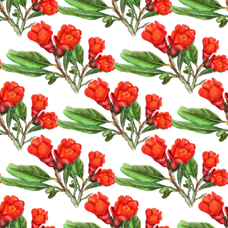 Seamless pattern with watercolor images of flowers of pomegranate. Good design for wallpaper, fabric or wrapping paper.