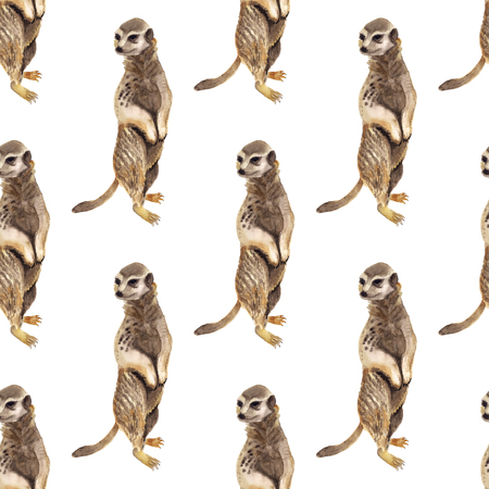 Seamless pattern with watercolor image of meerkat. Good design for wrapping paper, textile, scrap booking Stock Photo - 119430514