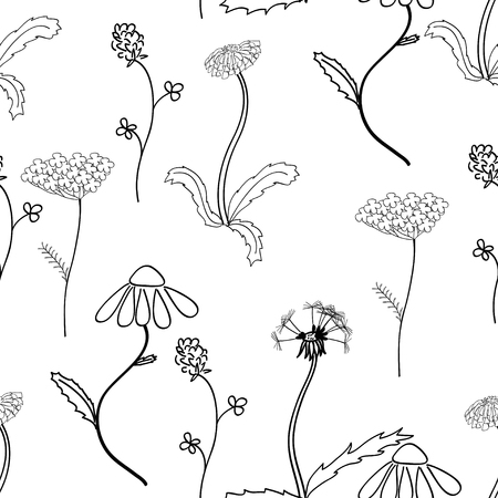Seamles pattern with black and white meadow flower on white background. Good design for textile, wrapping paper, wallpaper etc Illustration