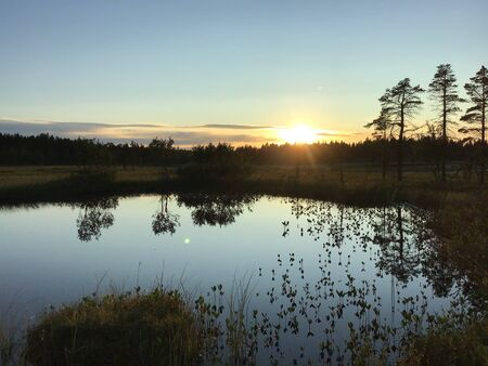 Sunset at the wild forest lake. Concept of nature, silent and calm. Reklamní fotografie