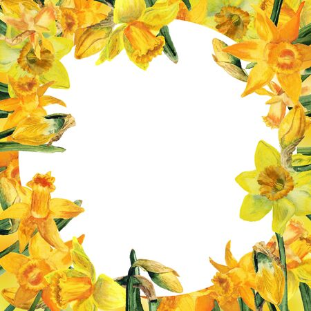 Decorative frame with watercolor yellow narcissus and leaves on white background. Good design for invitation card, flyer, etc Reklamní fotografie