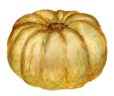 Watercolor image of pumpkin