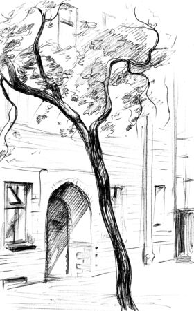 Vintage line art with ink city landscape on white background. Building and tree. Hand drawn sketch.
