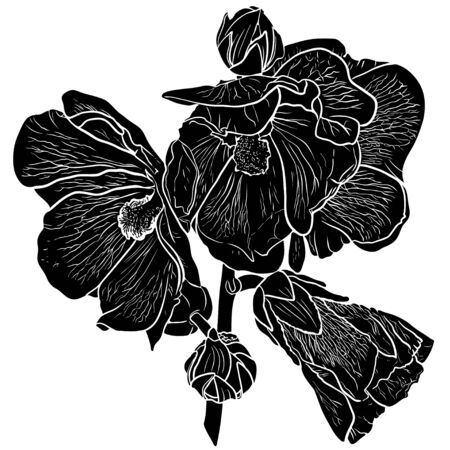 Black and white silhouette of hollyhock flower. Ilustracja