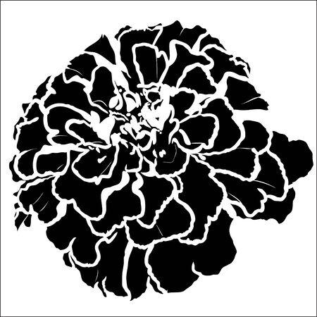 Tagetes flower silhouette Иллюстрация