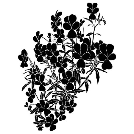 Silhouette of viola tricolor. Black illustration on white background.  Summer graphic. Isolated element. Meadow foliage. Herbal nature plant. 向量圖像