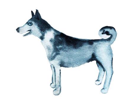 Watercolor image of husky.