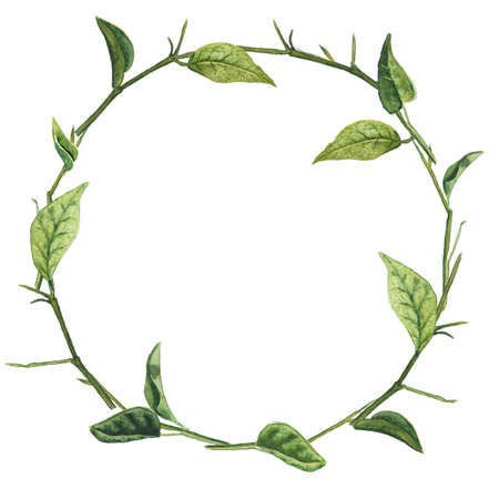Round frame with bared branches and green leaves