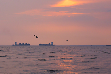Two large identical cargo ships seemingly going head-to-head, in a Thai river delta's picturesque sunset background, with lovely seagulls flying about the golden sky, and stunning waves.