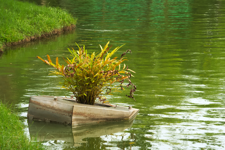 An old water lighting float system, nearly capsized by an ingrowing fern, in a very green park lake, in Bangkok, Thailand.