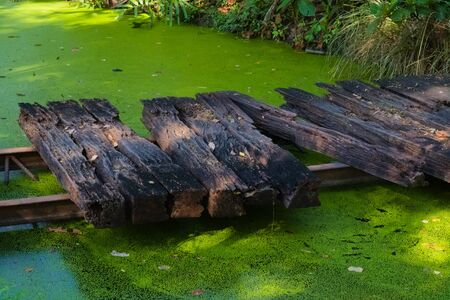 An old span of overturned railroad track, turned into a rustic wooden footpath bridge, spanning a small stagnate pond in a lush garden park in Bangkok, Thailand.