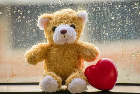 valentine s day teddy bear: teddy Bear and Heart concept valentine with water drops Stock Photo