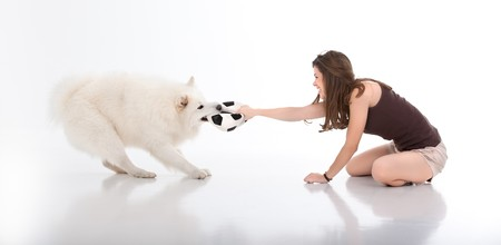 a studio image of a young woman playing with a white dog, both pulling on a football: the dog with its mouth and the woman with her hand