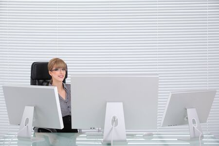 Portrait of a young smiling business woman in her clean office Stock Photo - 8259357