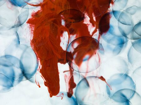microcosmic: cells with blue border transparent red paint dispersed in water