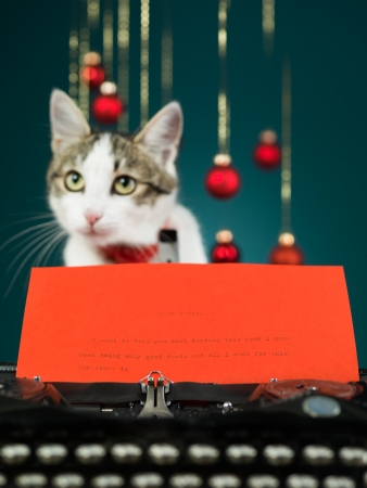 closeup of a typewriter with the beginning of a letter to santa written on red paper with a blurred cat behind it, on blue background Stock Photo - 16775880
