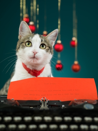 adorable cat looking up behind an antique typewriter with a letter to santa in it on blue background Stock Photo - 16775934
