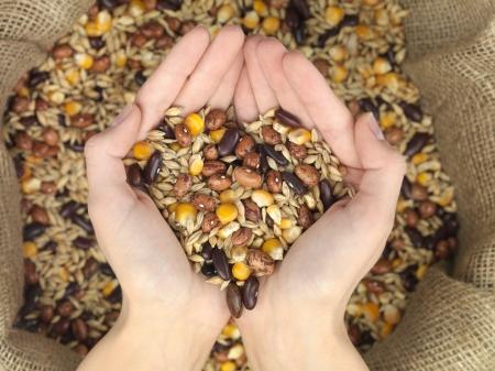 graan mix raffia tas gehouden over een hart-vormige palmen