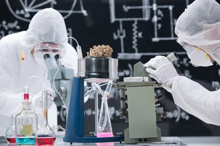 psilocybin: close-up of two scientists in a chemistry lab analyzing colorful substances and mushrooms with a blackboard on the background Stock Photo