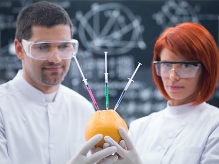 injected: close-up of two scientists in a chemistry lab holding in hands and analizing an injected grapefruit