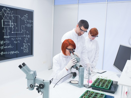 worktable: general-view  of a specialist teaching and supervising two women in a chemistry lab around a worktable with seedlings,  lab devices, tools and a blackboard on the background Stock Photo