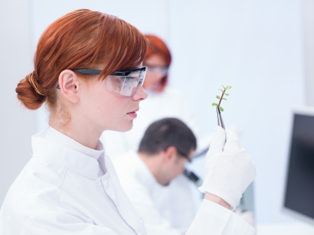 globalwarming: close-up of a student in a chemistry analyzing a plant