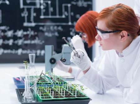 analytical: close up of a student in a chemistry lab analyzing a bug on a worktable with lab tools and glassware with another student on  the background analyzing under microscope with a blackboard on the background