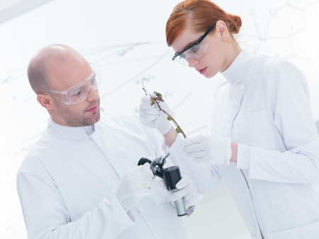 globalwarming: close-up of two  people   in a chemistry lab analyzing plants and scanning objects