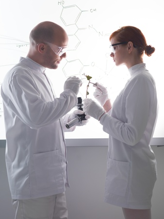 globalwarming: side-view of two people analyzing a plant in a chemistry lab with a white-board on the background Stock Photo