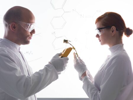 globalwarming: close-up of people scaning plants in a chemistry lab with a white-board on the background