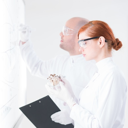 hallucinogen: close-up of one girl student analyzing a bunch of mushrooms and her teacher writing on a white-board in a chemistry lab