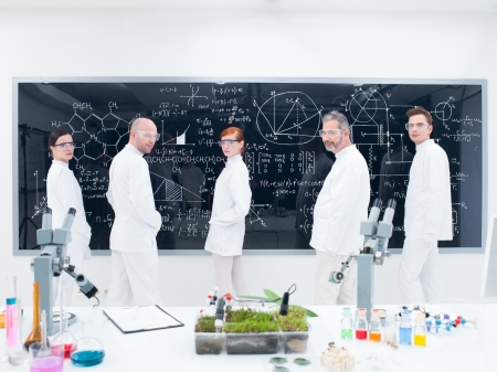 physic: sidel-view of five confident people in a chemistry lab around lab tools , leafs and colorful liquids with a blackboard eith formulas  on the background Stock Photo