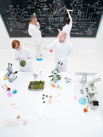 birdeye: bird-eye of four people in a chemistry lab conducting experiments , analyzing substances around a lab table and writing on a blackboard Stock Photo