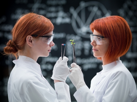 gloves nurse: side-view of two women scientists in a chemistry lab compared  analysis between pills and plants