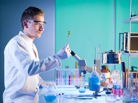side view of male scientist sitting at a table in a laboratory holding a plant with a pair of tweezers analysing it photo