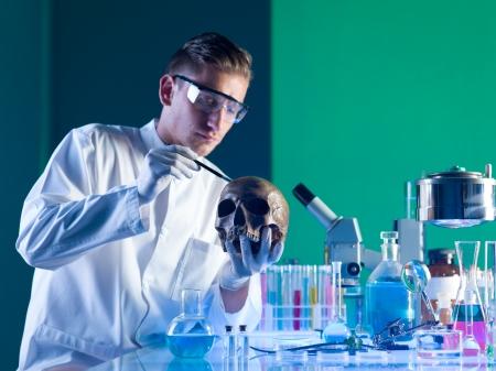 skelett mensch: Nahaufnahme der Arch�ologie Wissenschaftler B�rsten einen menschlichen Sch�del in einem Labor Lizenzfreie Bilder