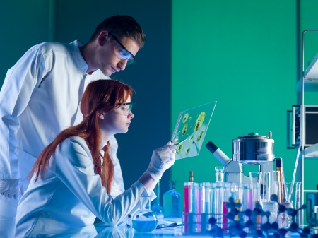 side view of two young caucasian researchers studying a sample in a laboratory photo