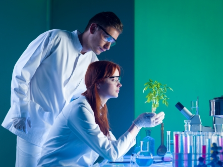 side view of botanical researchers holding a beautiful green plant, in a laboratory photo