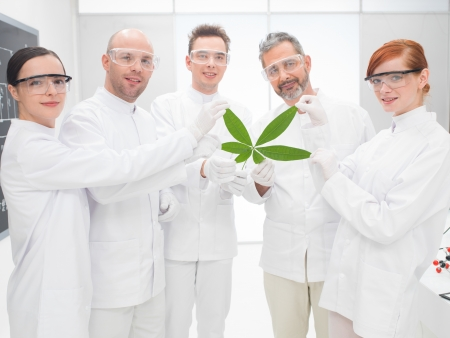 agronomy: Group of five male and female scientists holding a genetically modified leaf in a genetics engineering laboratory smiling proudly at the camera