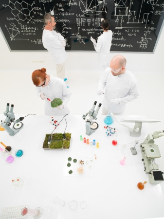 formulae: Aerial view of a group of diverse scientists or laboratory technicians working in a laboratory with plant specimens on the counter and molecular formulae and diagrams on a blackboard Stock Photo