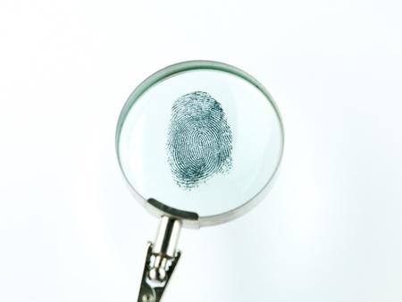 delincuencia: vista superior de una huella digital se ve a trav�s de una lupa, sobre un fondo blanco
